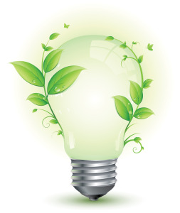 Bulb Sustainable